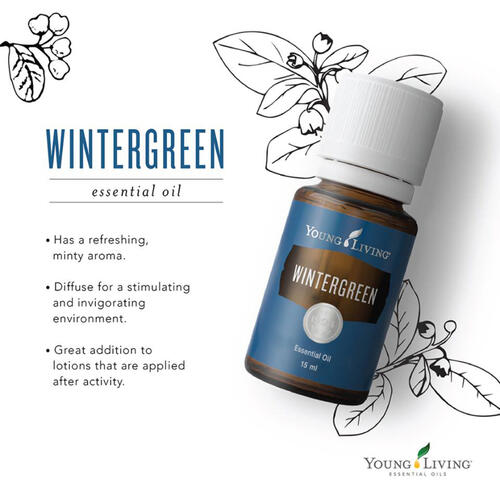 WINTERGREEN 15ml