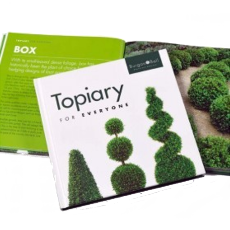 TOPIARY FOR EVERYONE