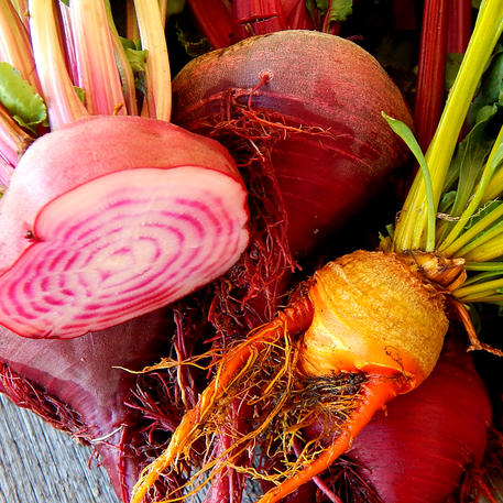 BEETROOT - HEIRLOOM MIX