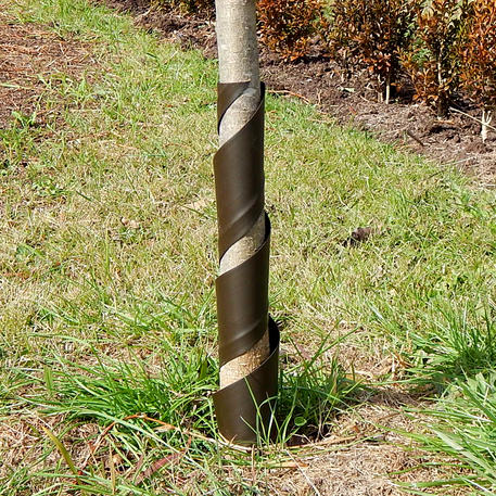 SPIRAL TREE GUARD 45cm